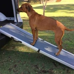 DOG LOADING RAMP  –   1810MM LONG  X 430MM WIDE